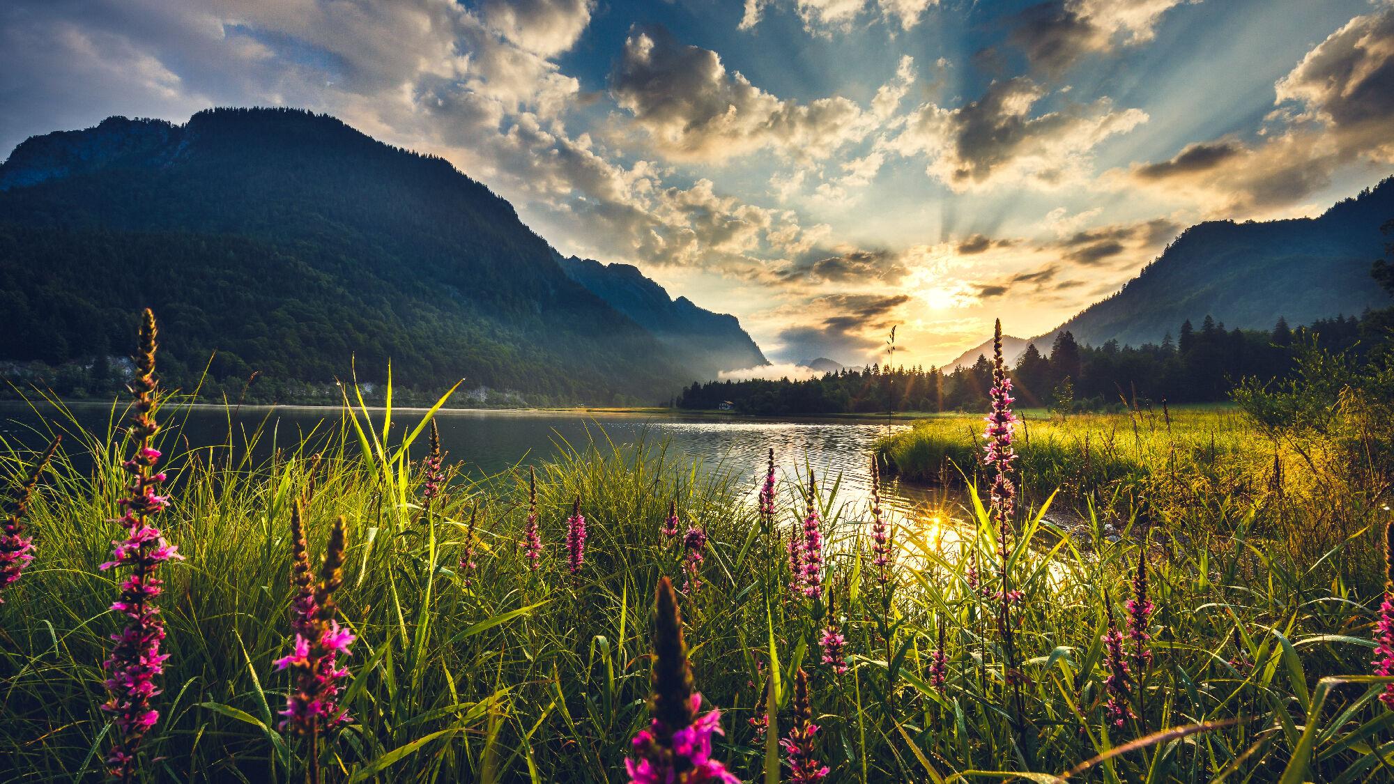 Traumhafte Landschaft im Chiemgau