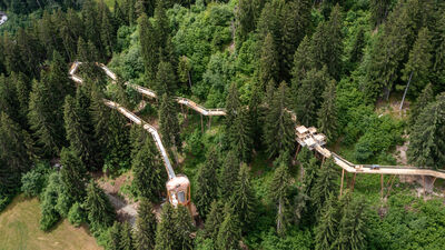 Ein Turm ermöglicht den Einstieg in den Baumwipfelpfad