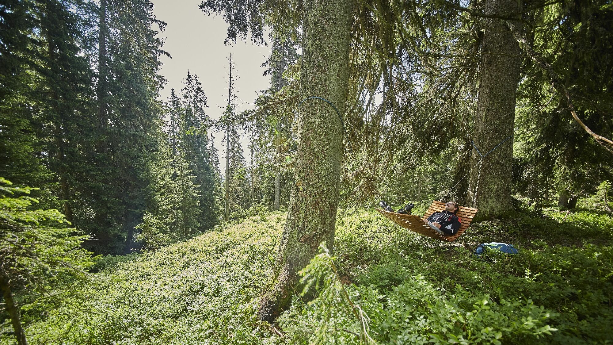 Waldwellness in Hinterglemm