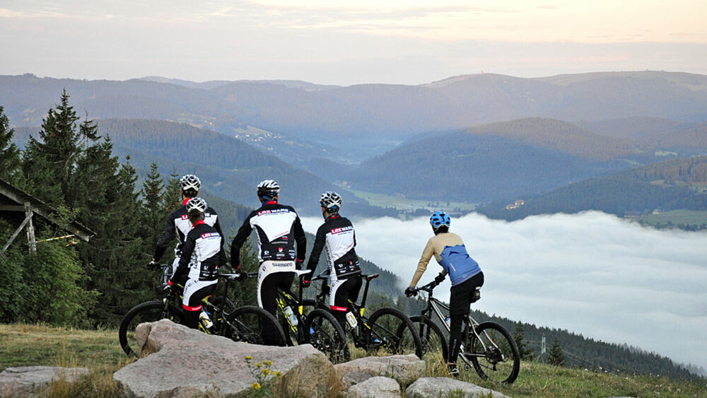 Fünf Biker blicken in die Landschaft des Hochschwarzwaldes
