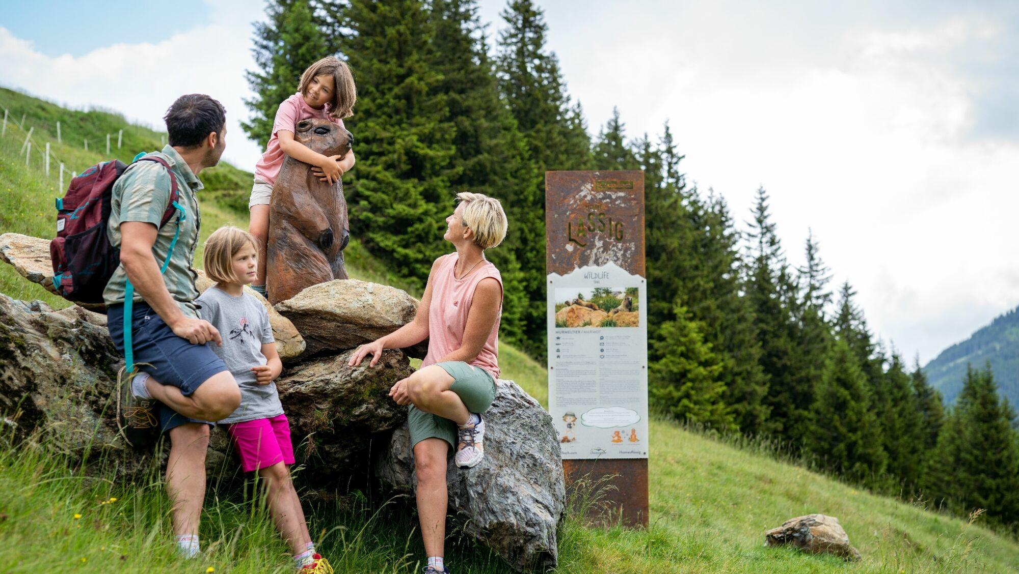Die Alpenfauna kennenlernen