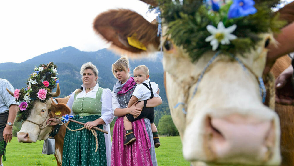 Feiern bei den Bauernwochen