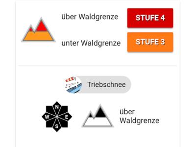 Screenshot von der SnowSafe APP