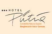 Logo Hotel Pütia