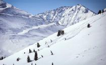 Die Tiefschneepiste von Copper Mountain © Tripp Fay, Copper Mountain