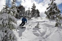 Abfahrt in Bogus Basin © Bogus Basin Mountain Recreational Association