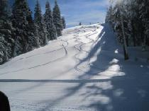 Tiefschneepiste in Donner Ski Ranch © Donner Ski Ranch