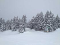 Neuschnee in Timberline © Timberline Ski Area