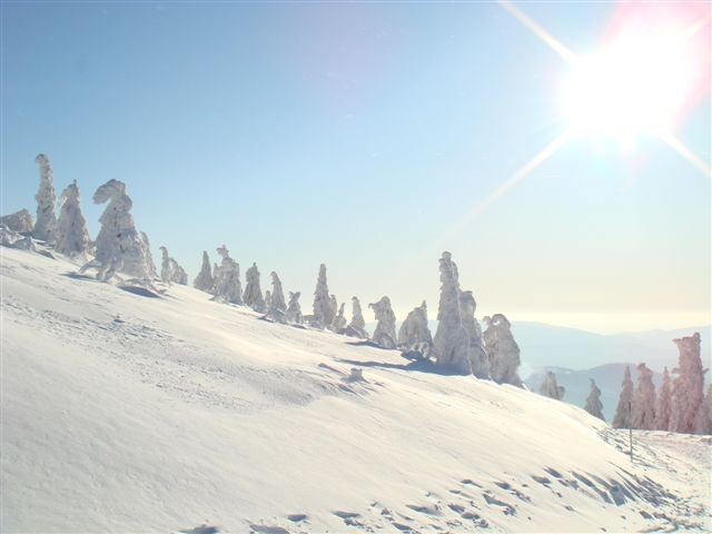 Winterlandschaft in Zwiesel