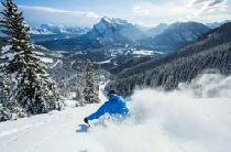 Powdern in Norquay im Skigebiet Banff © Mt. Norquay Banff