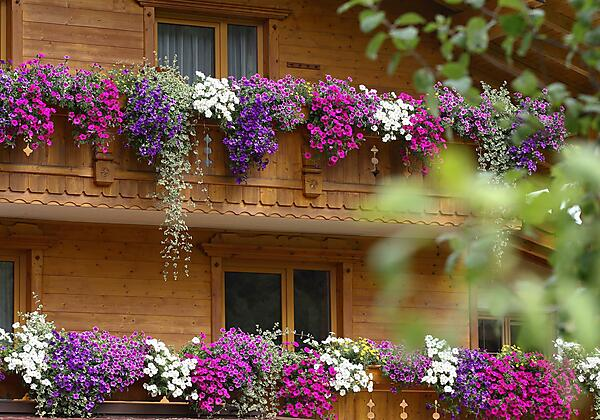Balkon Appartement Petra