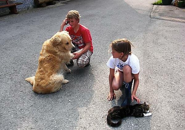 Aaron, unser Hund will mit Mucki spielen