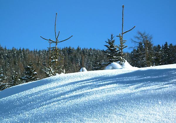 Ferienhaus Stubaiblick Winterlandschaft