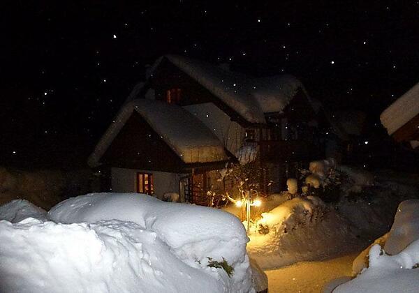 Haus Waldsicht Winter / winter