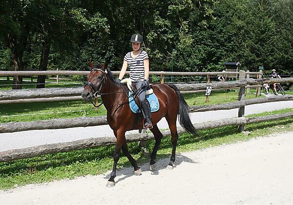 Reiter Pferde Stadlpoint Zillwertal Reitplatz Tiro