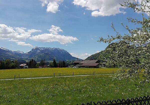 Ferienwohnung Waldesruh Ausblick