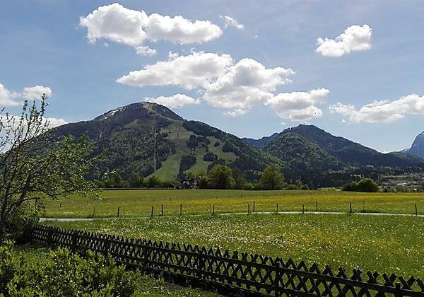 Ferienwohnung Waldesruh Ausblick Unterberg