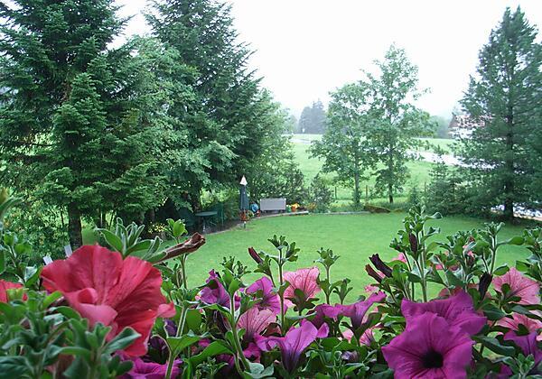 Blumen und Garten