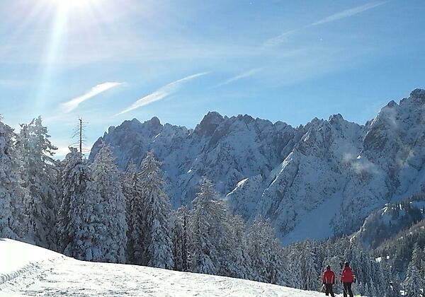 Zwieselalm Dachstein-West