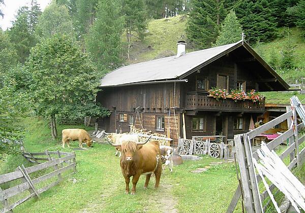 Gullenhütte Forellenteich