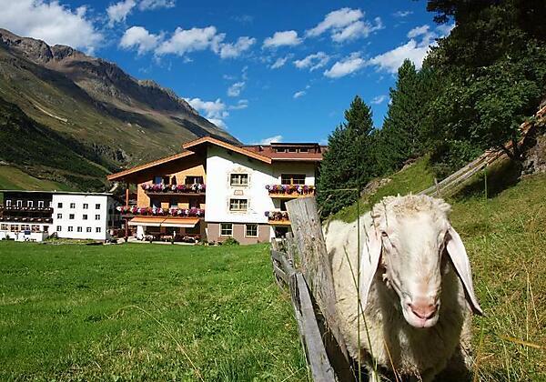 Hausansicht Südseitig mit Schaf