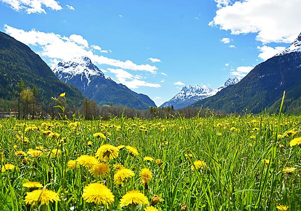Hotel Stern Winter