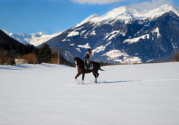 Winterreiten Landgut Moserhof