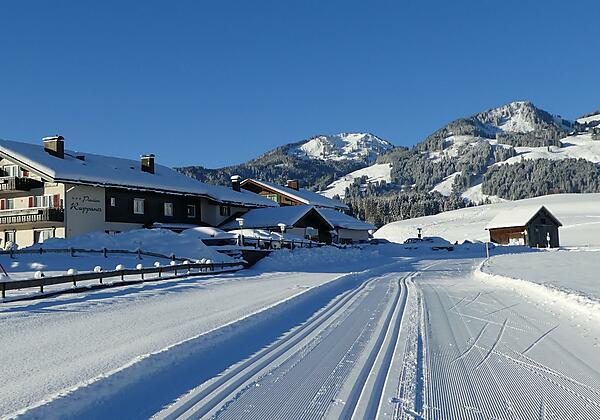 Winter rund ums Landhaus Ruppaner