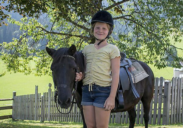 Ponys zum Anfassen
