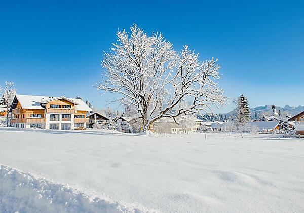 Wintertraum in Ofterschwang