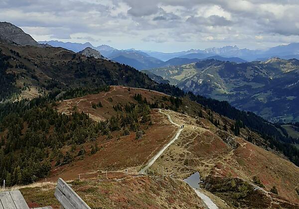 Landhotel-Steindlwirt-Dorfgastein-Bad