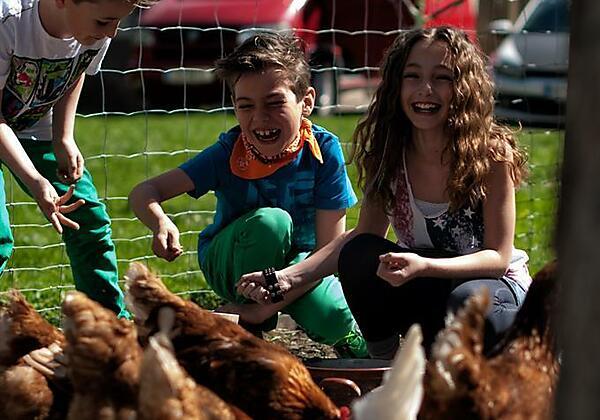 Kinder mit Hühnern