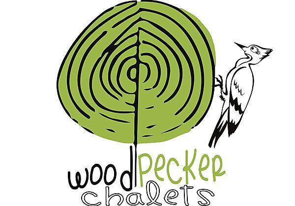 Winter Woodpecker