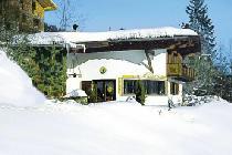 Ferienhaus in Wildschönau-Niederau