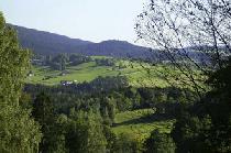 Ferienhaus in Rinchnach
