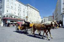 Ante Portas in Salzburg