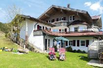 Alpenrösle in Balderschwang